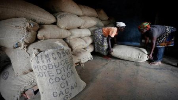 Women from a local cocoa farmers association lift a sack in a cocoa warehouse in Djangobo, Ivory Coast, November 17, 2014. REUTERS/Thierry Gouegnon/File Photo