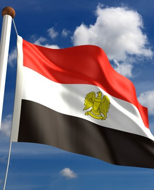 Egypt issues controversial NGO law