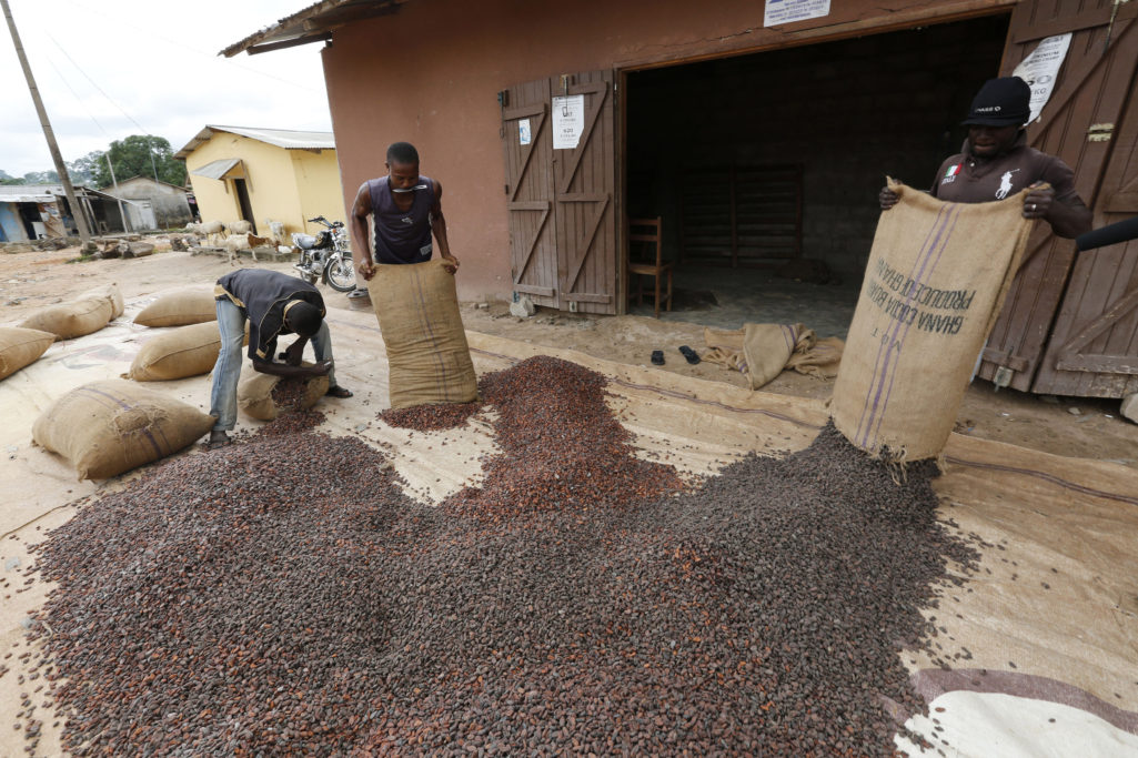 Cocoa production in Ghana