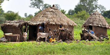Fulani are semi-nomadic herders. Photo: Getty Images