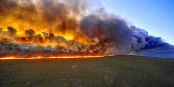 The Amazon rainforest fires