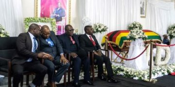 Mugabe coffin