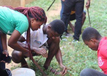 Tree planting in Ghana