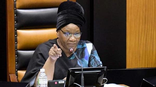 Porn shown in SA parliament zoom meeting
