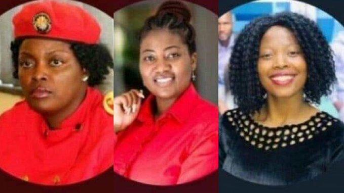 Zimbabwe female activists