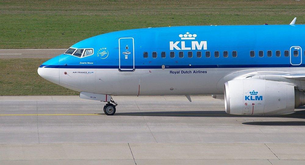 Bird strike on KLM flight in Ghana